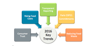 2016 Key Sustainability Opportunities
